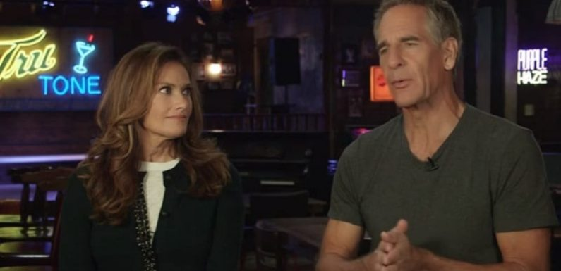 Who is Rita Devereaux on NCIS: New Orleans cast?