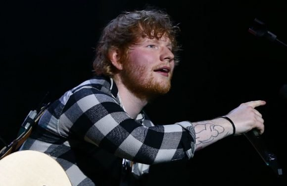 Ed Sheeran Wants People To Stop Having Sex On His Lawn