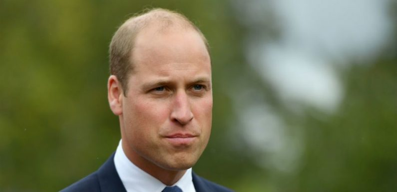 Prince William Goes On Rhino Tracking Expedition In Namibia