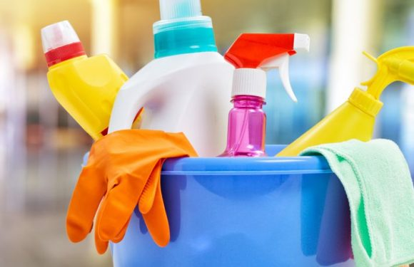 Household Cleaners May Be Contributing to Excessive Weight In Children, Study Shows
