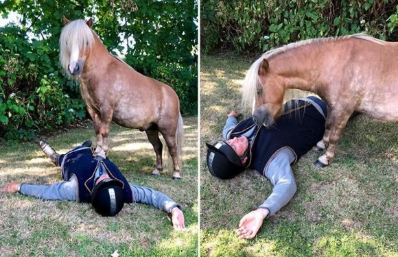 Two ponies 'perform CPR on collapsed rider' as trainer bids to prove horses are as clever as dogs