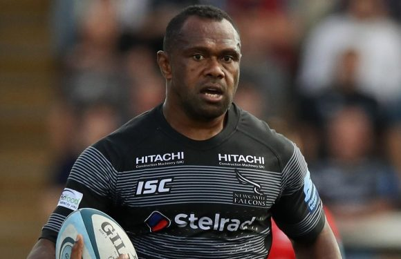 Newcastle 21 Saracens 32: Niki Goneva's cheekiest try of century ruled out by killjoy ref as brave Falcons fall to the champs