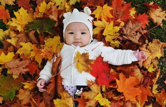 Autumn-themed baby names proving a huge hit with parents – so would YOU choose any from the top choices?