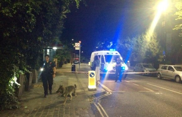 Tufnell Park stabbing – Man in his 20s is stabbed to death in North London street