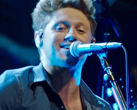 Check Out Niall Horan's New Music Video