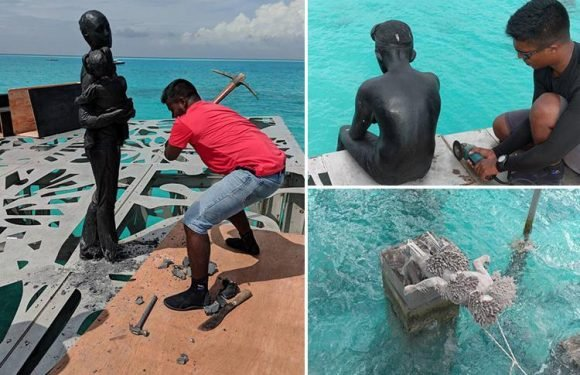 Brit's submerged art gallery in the Maldives DESTROYED by pickaxe-wielding cops after president declares it 'offensive to Islam'