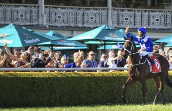 Winx makes it 27 in a row in the Colgate Optic White Stakes