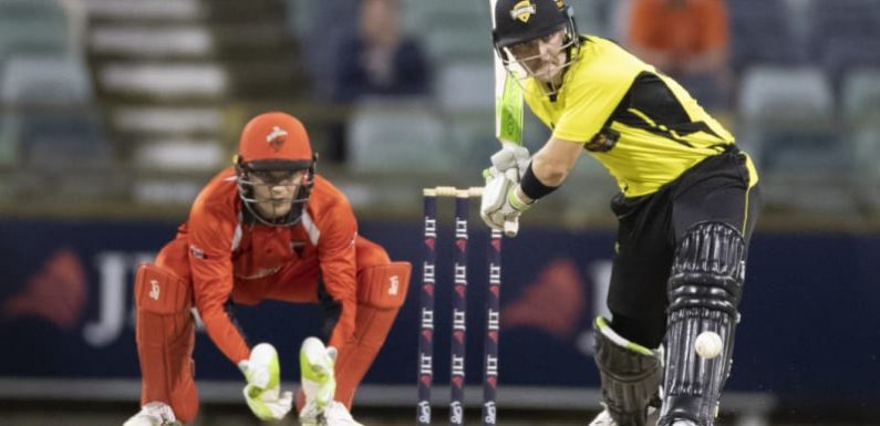 One-day champs WA outlast Redbacks to stay top