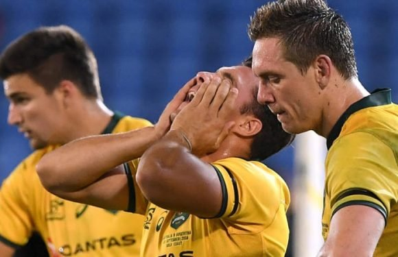 South Africa and Argentina tours might be just what Wallabies need