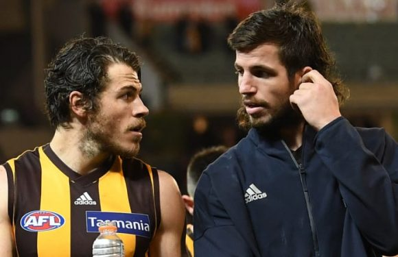 Hamstring rules Hawks' defender Ben Stratton out of semi-final