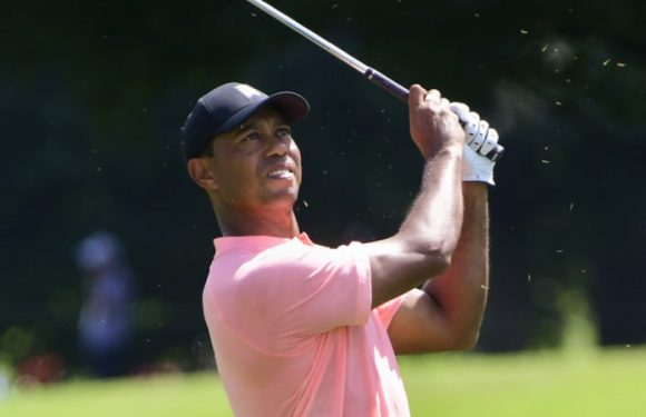 Tiger shares Tour Championship lead, Day well placed