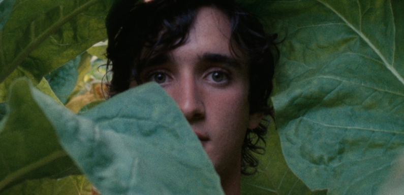 'Happy as Lazzaro': Martin Scorsese Added as Executive Producer to Alice Rohrwacher's Potential Oscar Entry — Exclusive