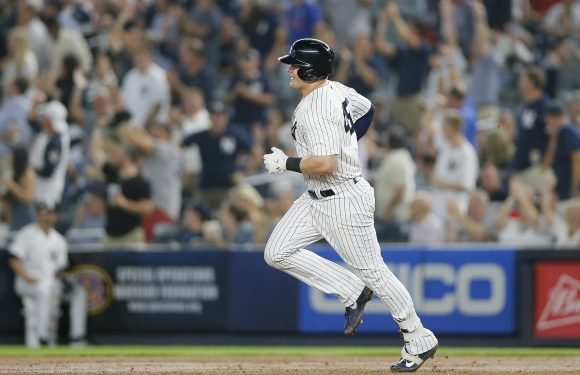 Luke Voit has embraced every part of becoming a Yankee