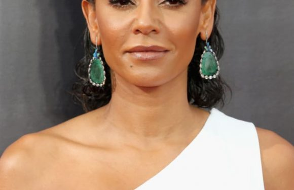 "Mel B Is a ""Habitual Drug User"" According to Court Ruling"