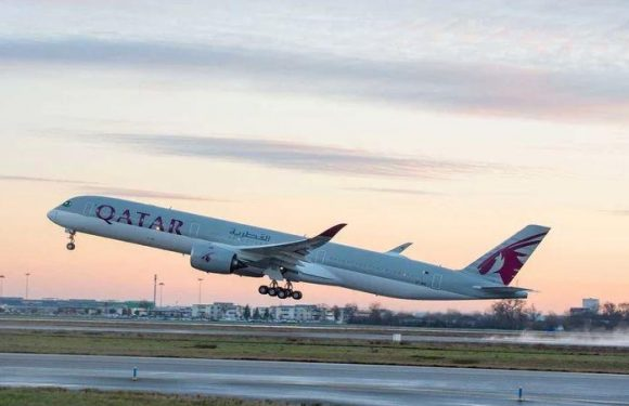 US baby 'dies on Qatar Airways flight after suffering breathing problems while flying with his parents'