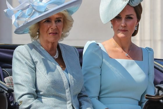 A Book Claims Duchess Camilla Tried To Break Up Prince William And Duchess Kate
