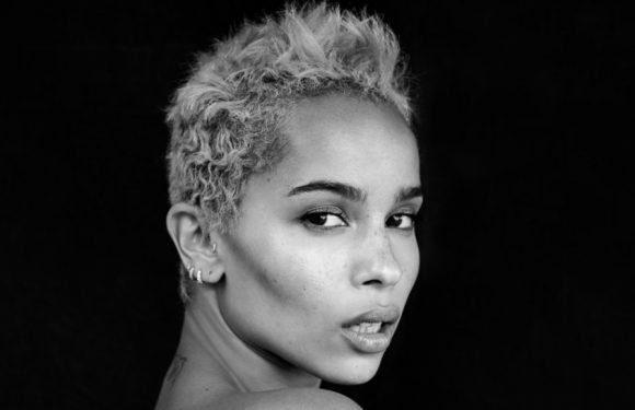 Zoe Kravitz to Star in 'High Fidelity' TV Series at Disney Streaming Service