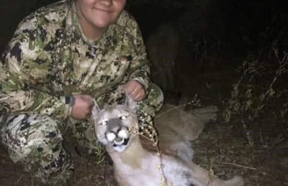 Teen fires arrow at cougar, saving life of her 6-year-old brother