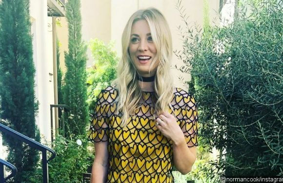 Fed Up With Pregnancy Questions, Kaley Cuoco Advises Instagram Trolls to Shut Up