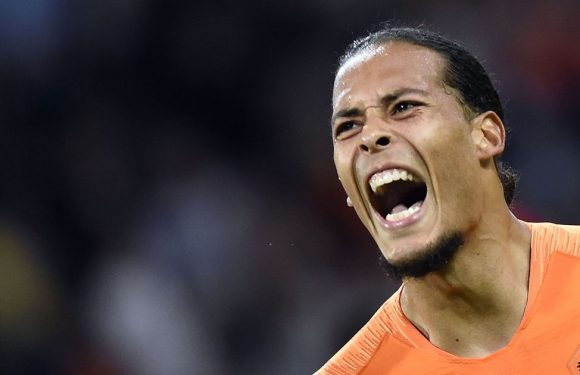 What Liverpool fans are saying about Virgil van Dijk's Holland team-mate