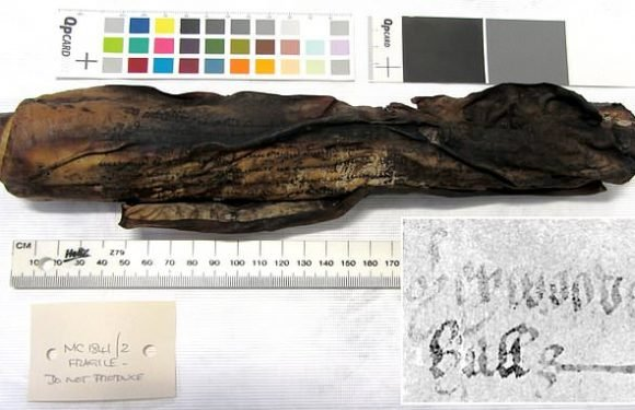 Tudor parchment burned and fused together is deciphered by X-RAY