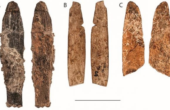 Scientists have found a unique 90,000-year-old knife made from bone