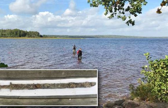 Eight-year-old girl pulls pre-Viking era SWORD from a lake in Sweden