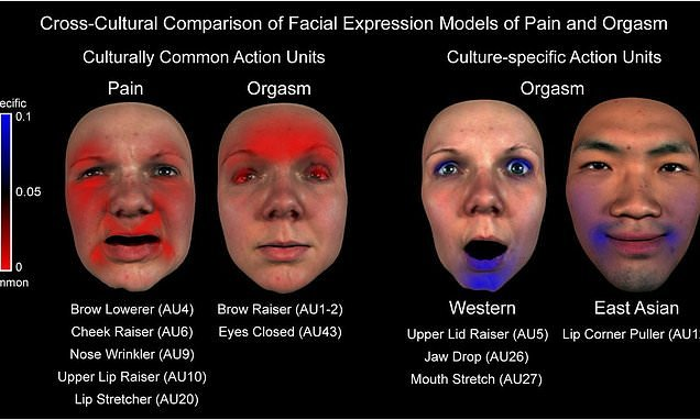 Study reveals how our faces react in an orgasm