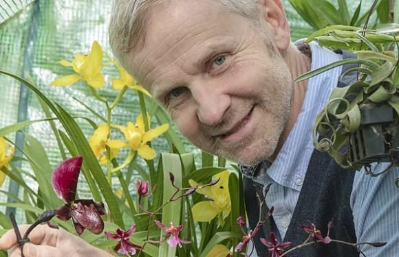 One obsessive collector explains the seductive allure of orchids