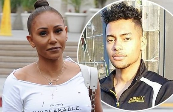 Mel B 'accused of hitting male model'