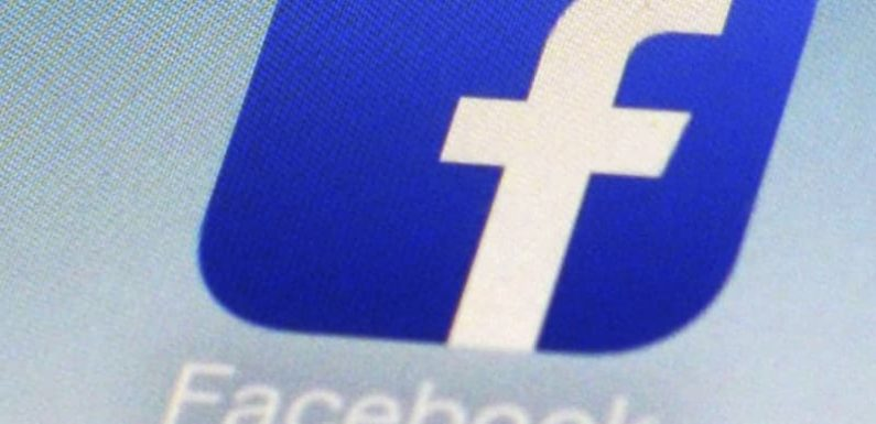 Facebook purged over 800 accounts, pages of US political spam