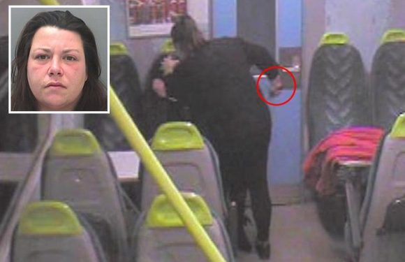 Moment woman just released from jail repeatedly stabs friend in face on train while shouting 'go to sleep little girl'