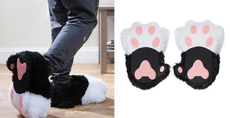 You can now buy cat slippers that PURR when you walk around in them