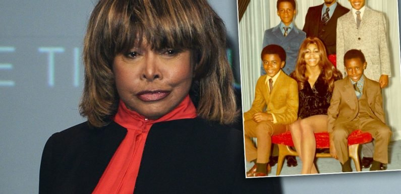 Tina Turner's Family Fractured After Son's Suicide: Star's 'Not Close' To Kin