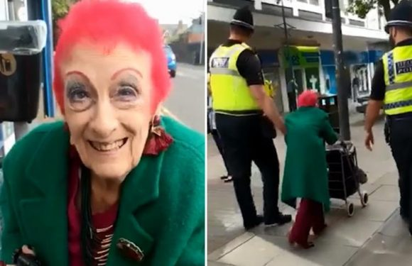 Heartwarming footage shows two burly cops help pint-sized pensioner, 84, do her shopping after she fell in the street