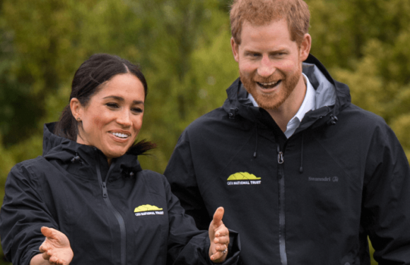 Meghan Markle's Opinion On Social Media Revealed: Is She 'Born With It Or Maybe It's A Filter'