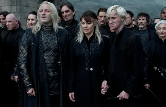 Harry Potter fans reveal sweet meaning behind Draco Malfoy's mum's name… and it changes everything