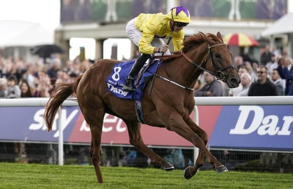 The Sun Racing team pick their standout horse from another season to remember on the level