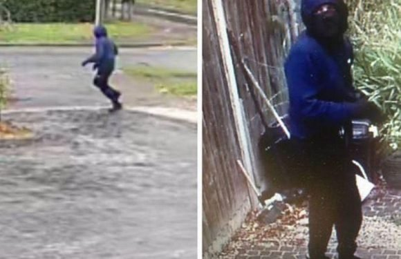 Hunt for hooded thugs who broke into OAP's home and dragged her down hallway in violent robbery