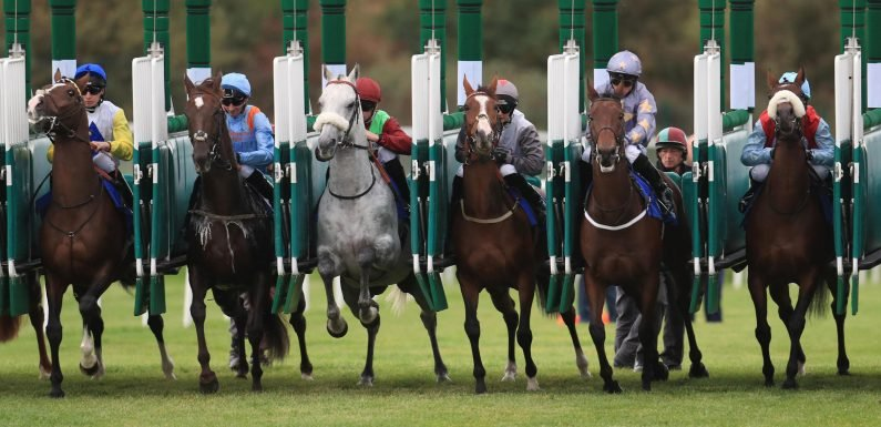 Best horse racing tips: Sun Racing's top picks for today's racing at Newmarket, Hexham, Chepstow, York and Chelmsford