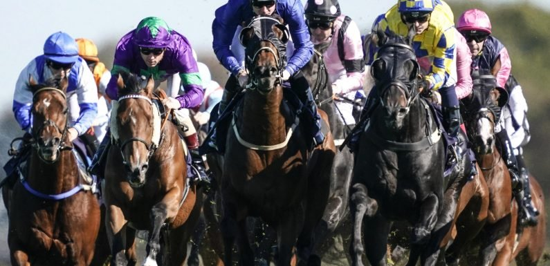 Free horse racing tips for today: Ayr, Chelmsford, Worcester and Bangor – Steve Mullen's betting preview for Thursday, October 11