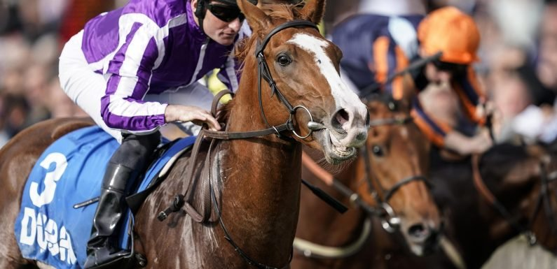 Wednesday's racing tips: Two longshots to fill your pockets at Bath and Wetherby