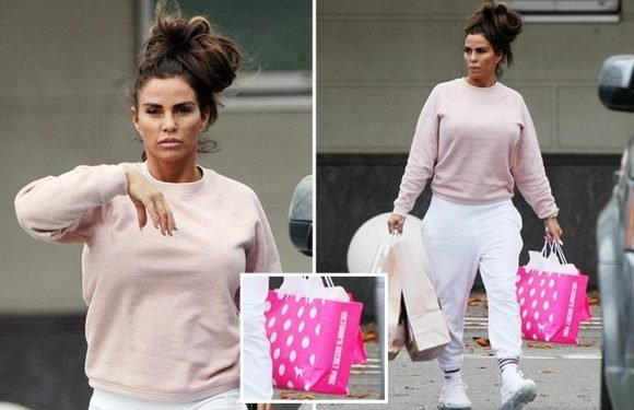 Katie Price pictured with bagful of new posh lingerie after leaving Kris Boyson's home