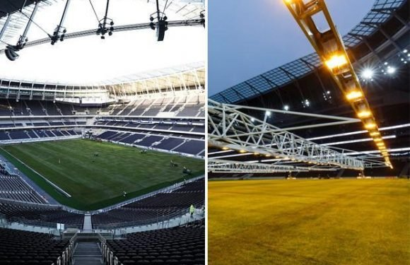 Tottenham new stadium all-but complete with lights now on growing pitch's grass ahead of debut match