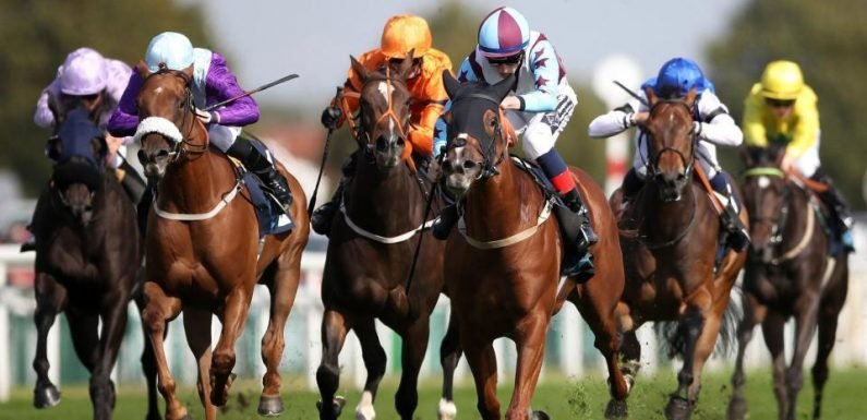 Templegate's horse racing tips: Wolverhampton, Brighton, Chelmsford