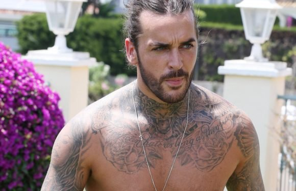Who is Pete Wicks? Towie and Celebrity Island 2018 star and Megan McKenna's ex now dating Shelby Tribble