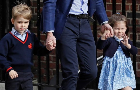 How old are Prince George and Princess Charlotte, what is Prince Louis' full name and what is the age difference between them?