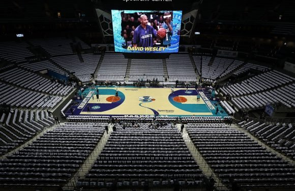 Twitter fell in love with the Charlotte Hornets' new throwback court