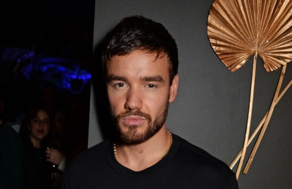 Liam Payne 'praying' as he's prepared to lose home in Californian wildfires