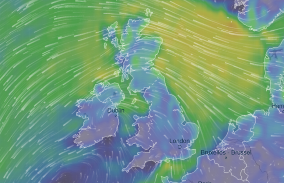 UK weather forecast – First snow hits Britain as Met Office predicts -5C DEEP FREEZE tonight – see if YOU will get any white stuff with our maps